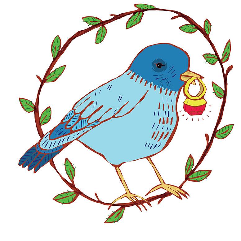 Olivia Villet bird